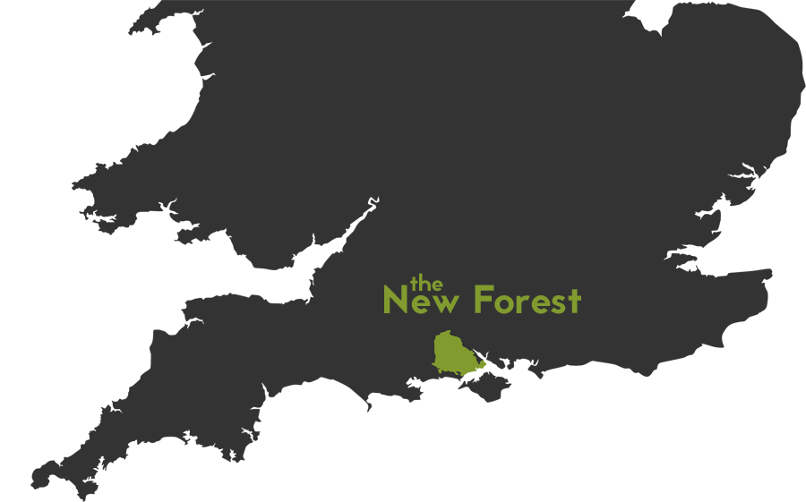 UK Map of Forest